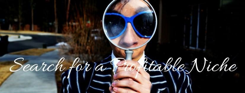 Search for a Profitable Niche